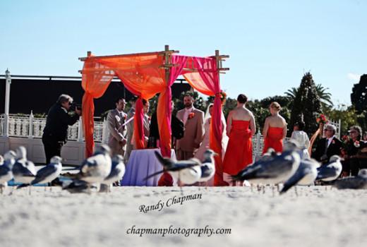 Wedding Spotlight: Dolores + Daniel