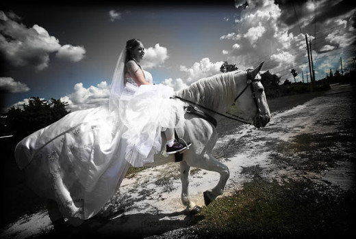 Wedding Spotlight: Erin + Steve
