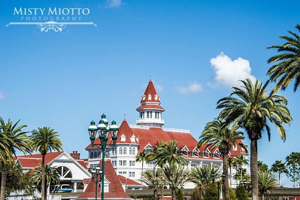ORLANDO_WEDDING_PHOTOGRAPHER_MISTY_MIOTTO_0200